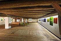 Lucie Novotná - Landschaftsmalerei, Egon Schiele Art Centrum Český Krumlov 17.4. - 31.10.2010