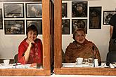 Slavnostní vernisáž výstav Politický plakát SSSR, Socialistický realismus, Současné ruské umění, Ruské video-umění, FRANTA  - František Mertl, Egon Schiele Art Centrum Český Krumlov, 3.4.2009, foto: Libor Sváček